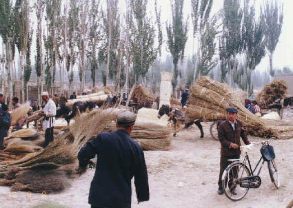 china158.jpg (248502 bytes)