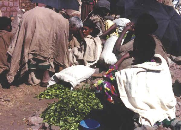 ethiopia124.jpg (199419 bytes)