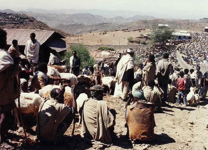 ethiopia131.jpg (256610 bytes)