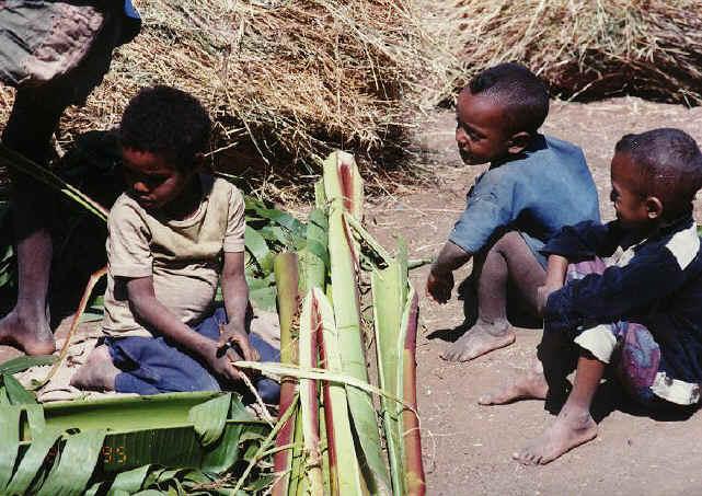 ethiopia135.jpg (257441 bytes)