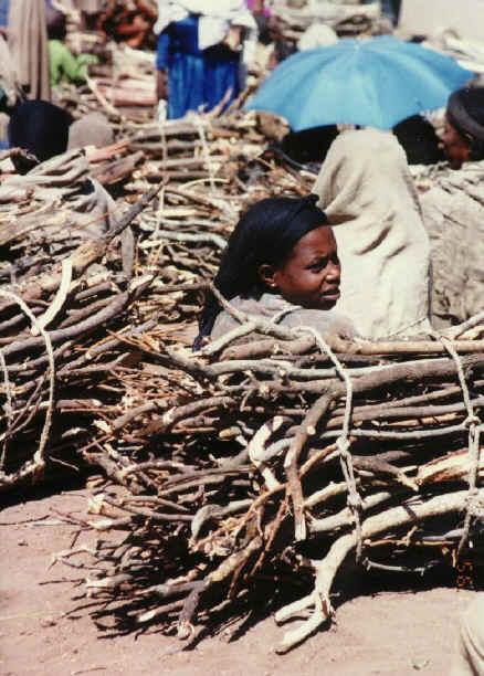 ethiopia137.jpg (229914 bytes)