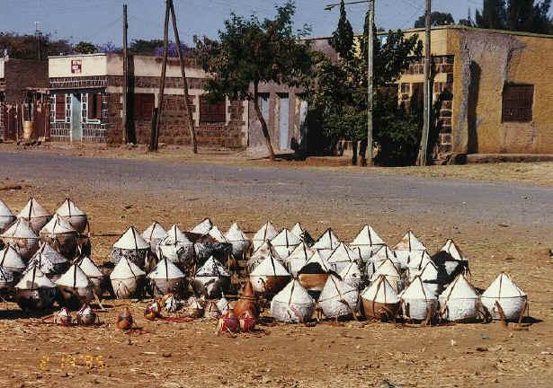 ethiopia147.jpg (265678 bytes)