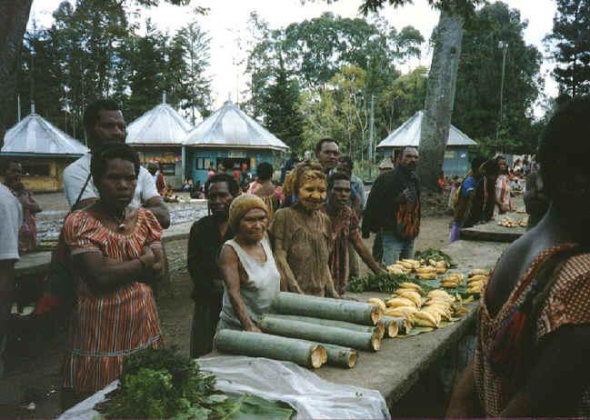 newguinea101.jpg (312681 bytes)