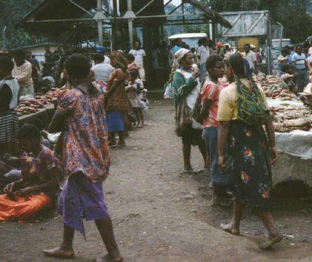 newguinea103.jpg (351775 bytes)