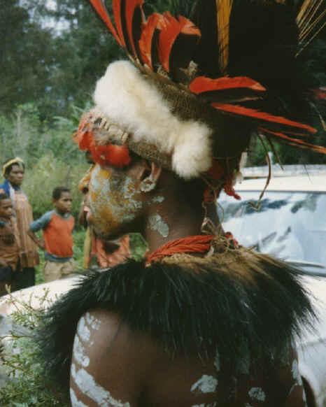 newguinea106.jpg (209343 bytes)
