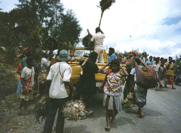 newguinea118.jpg (263123 bytes)