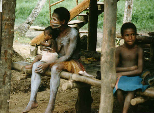newguinea172.jpg (283081 bytes)