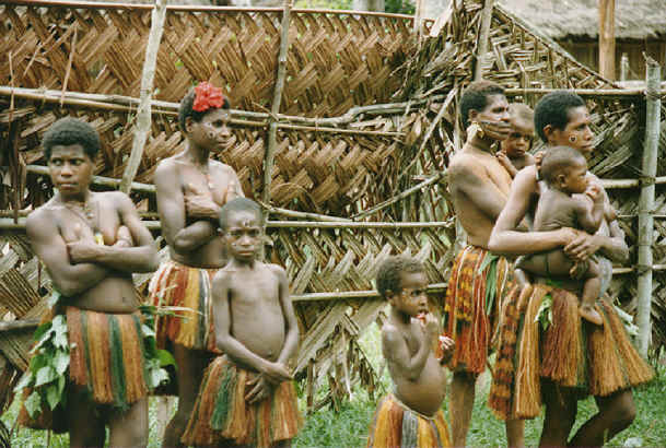 newguinea173.jpg (316623 bytes)