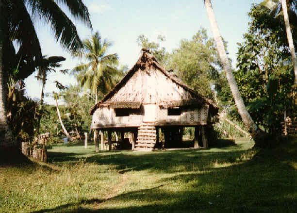 newguinea182.jpg (308355 bytes)