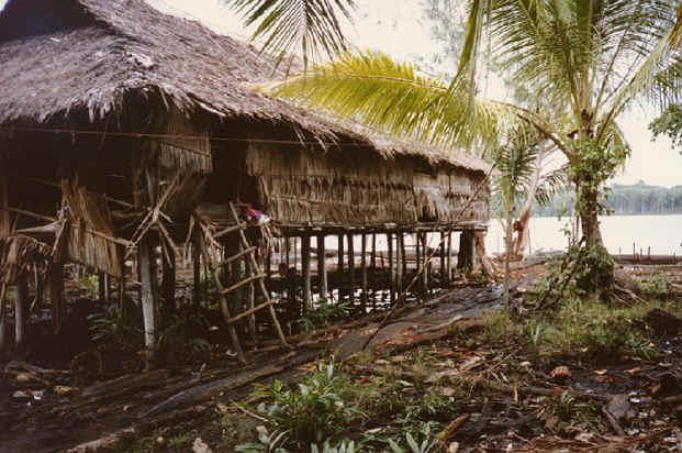 newguinea187.jpg (295708 bytes)