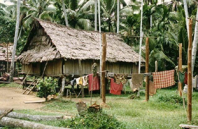 newguinea189.jpg (360814 bytes)