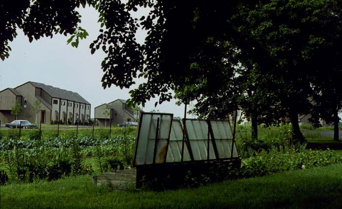 farm1974b.jpg (91427 bytes)