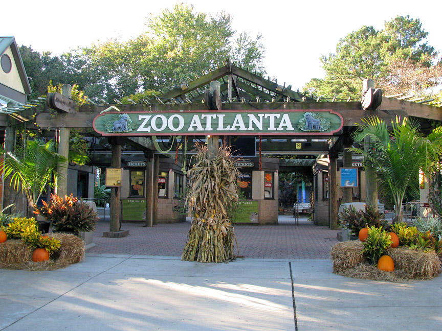 Atlanta Zoo Coupons Publix Movie Search Engine At