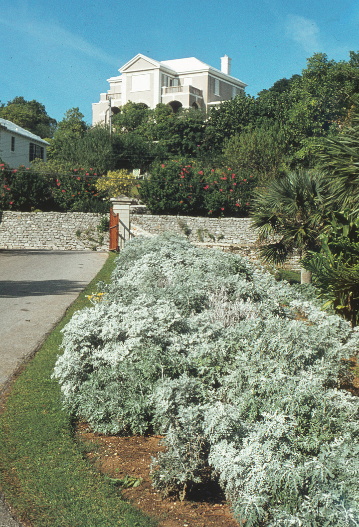 Bermuda Travel Photos By Galen R Frysinger Sheboygan