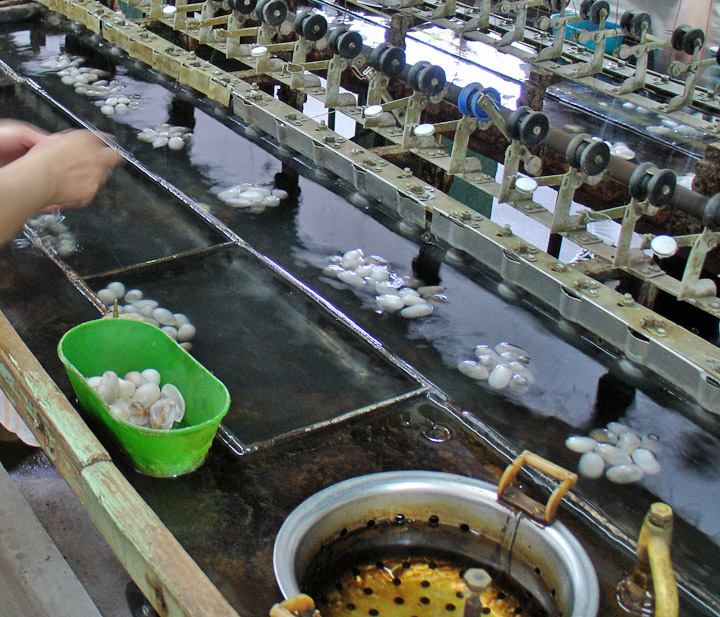 silk production Asia thailand the northeast: isaan surin and around silk production most hand-woven thai silk is produced by isaan village women, some of whom oversee every aspect of sericulture, from the breeding of the silkworm to the dyeing of the fabric.