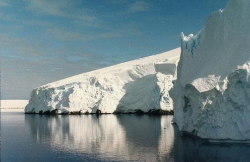 antarctica07.jpg (63521 bytes)