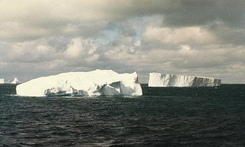 antarctica17.jpg (64005 bytes)