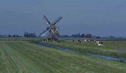 holland5.jpg (47333 bytes)