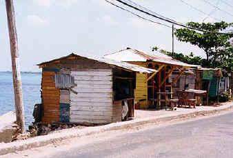 jamaica04.jpg (63621 bytes)