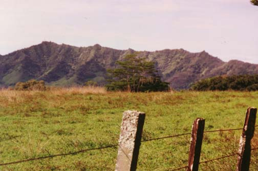 kauai6.jpg (59500 bytes)