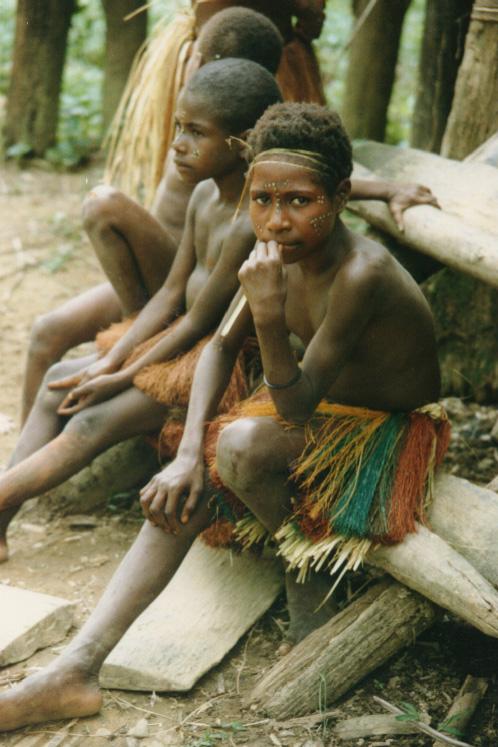 newguinea141.jpg (194806 bytes)