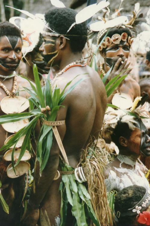 newguinea144.jpg (220543 bytes)