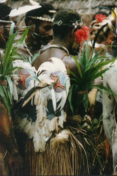 newguinea145.jpg (214750 bytes)