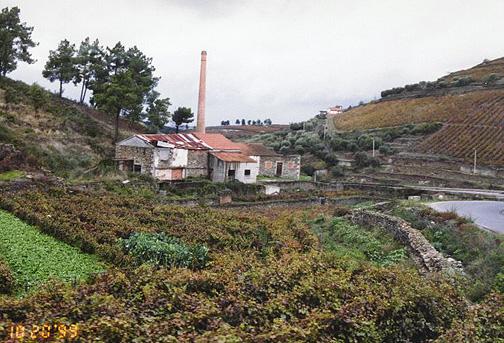 portugal84.jpg (146946 bytes)
