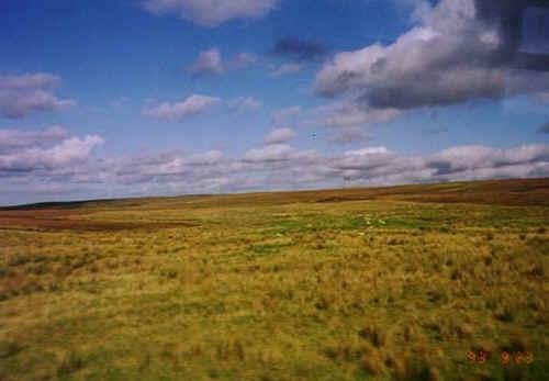 scotland.jpg (59834 bytes)