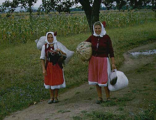 serbia5.jpg (86107 bytes)