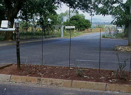 swaziland1.jpg (85971 bytes)