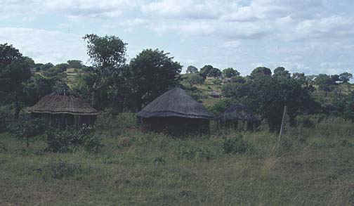 swaziland2.jpg (53209 bytes)