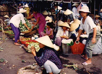 vietnam6.jpg (80892 bytes)