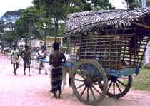 srilanka.jpg (62976 bytes)