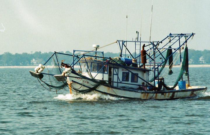 Mississippi sound off biloxi mississippi travel photos for Fishing in biloxi ms