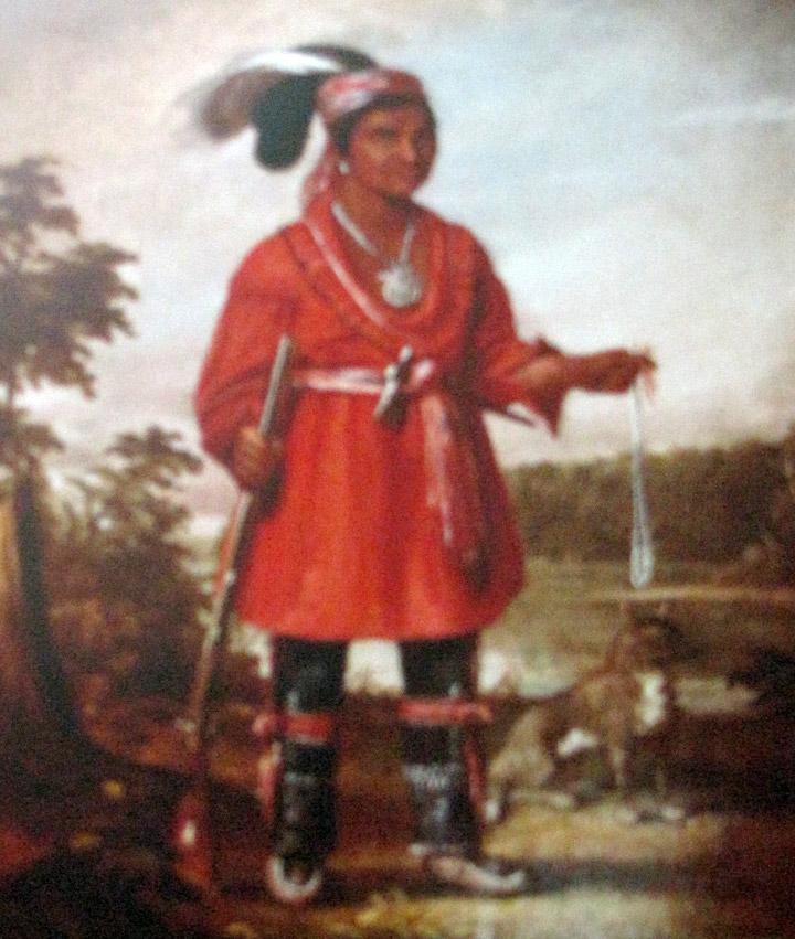Native Wisconsin Plants: Native Americans In Wisconsin, Wisconsin Historical Museum