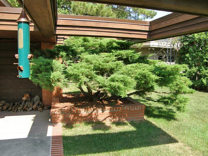grounds   bernard schwartz house designed  frank lloyd wright  rivers wisconsin